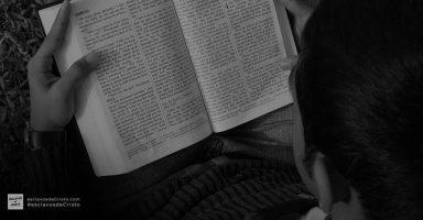 que-herramientas-usar-para-estudiar-la-biblia-efectivamente