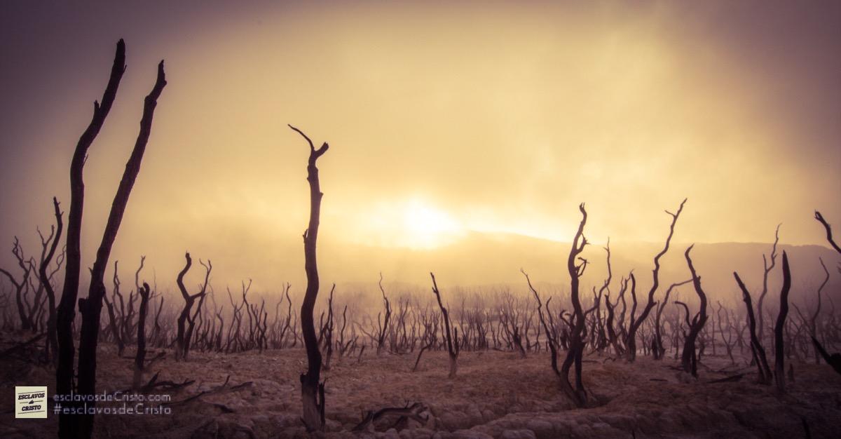 ¿Cómo puede el Dios de orden hacer una tierra desordenada y vacía?