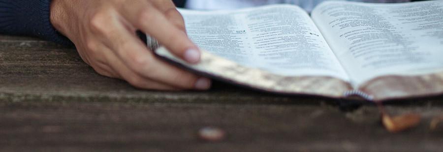 ¿Por qué esclavos de Cristo?