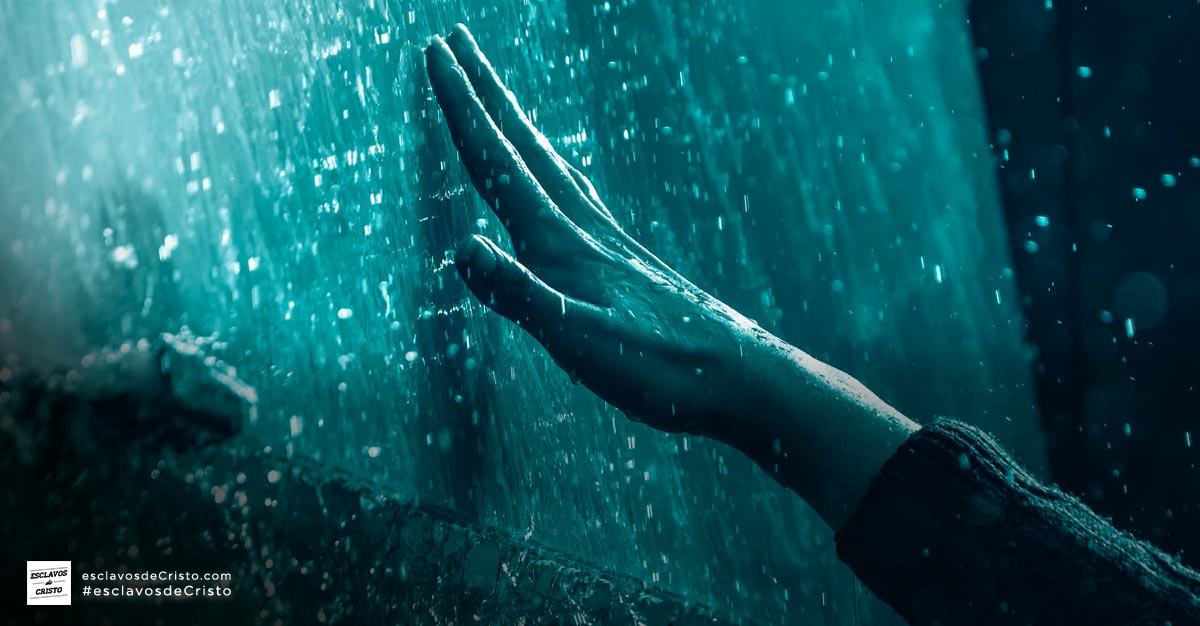 Perseverancia de los santos - Guardados por gracia